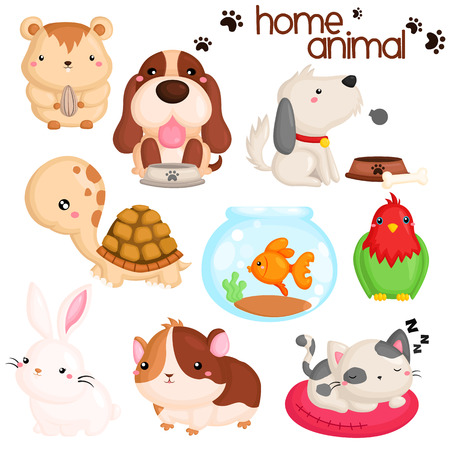 rabbits: Home Pet Vector Set