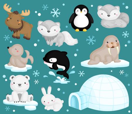동물: 북극 동물 벡터 설정