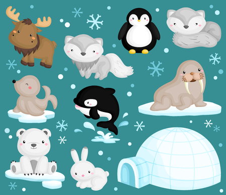 polar bear on the ice: Arctic Animal Vector Set