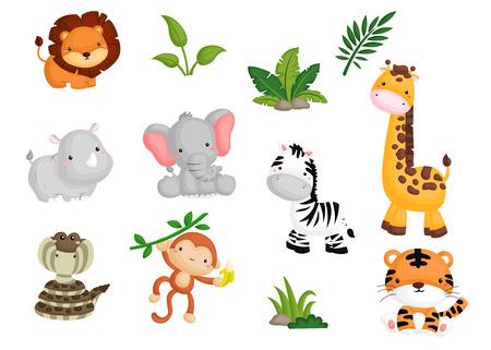 zwierzeta: Jungle zwierząt Ilustracja