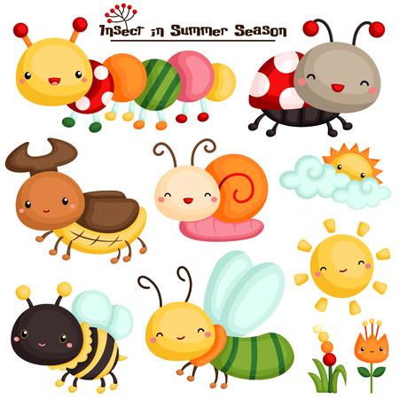 bug cartoon: Insect in Summer Season