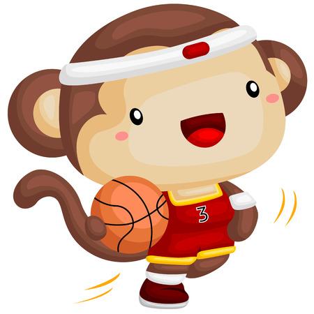 fury: Basketball Monkey