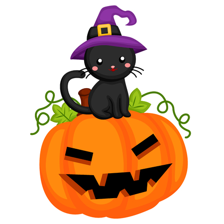 Pumpkin with black cat sitting on top Illustration