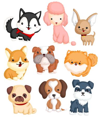 Dogs Type Vector Set Illustration