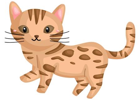 a cute bengal cat Vektorové ilustrace