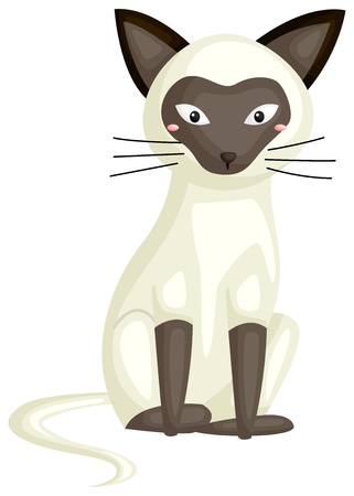 a siamese cat Иллюстрация