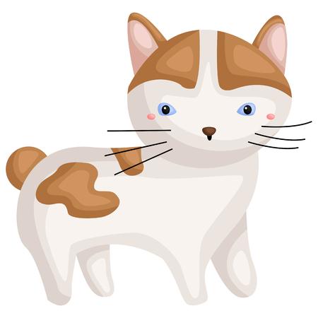 a japanese bobtail cat