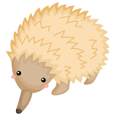 a vector of a cute and adorable echidna