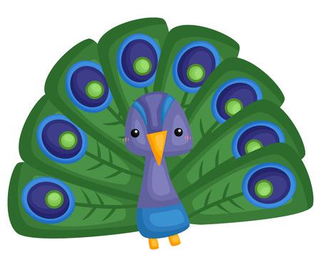 a vector of a cute and adorable peacock