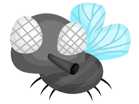 a vector of a cute big eye fly