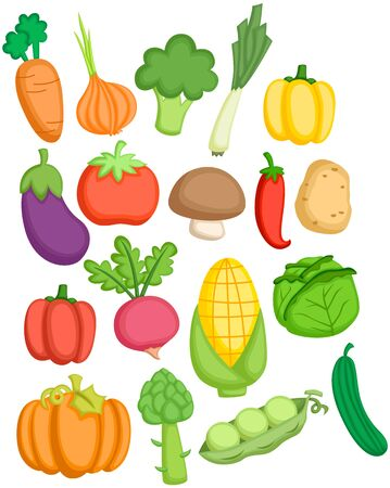 a vector collection of many vegetables