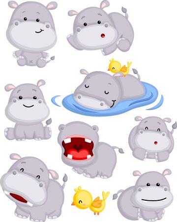 un vector de un lindo hipopótamo en muchas poses