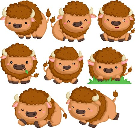 a vector of bison in many poses Illustration