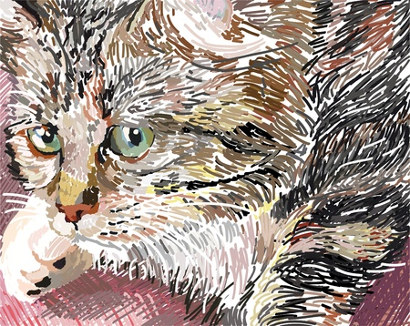 capricious: Illustration of sweet pussycat