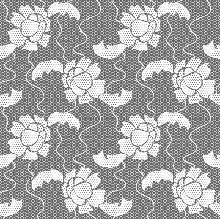 trabajo manual: Encaje blanco patrón de la tela transparente con flores Vectores
