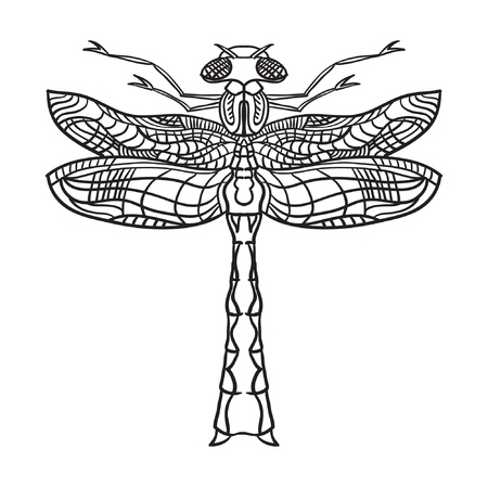 Dragonfly  illustration  Outline black illustration on white background  Vector