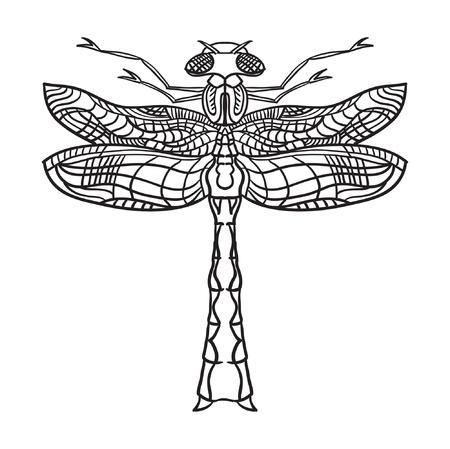 mechanical texture: Dragonfly  illustration  Outline black illustration on white background  Illustration