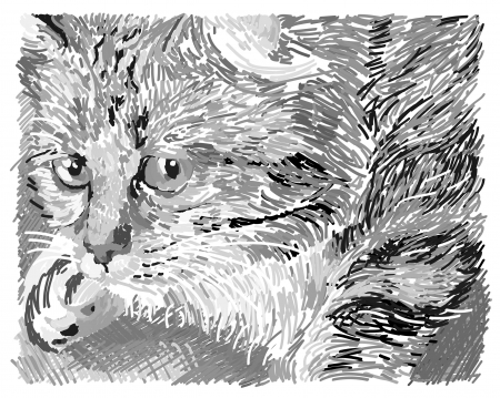 Illustration of sweet pussycat. Hand drawn illustration.