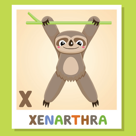 X is for Xenarthra. Letter X. Xenarthra, cute funny illustration. Animal alphabet