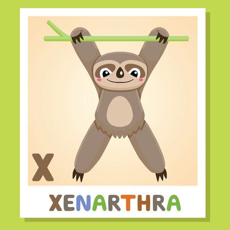 X is for Xenarthra. Letter X. Xenarthra, cute funny illustration. Animal alphabet