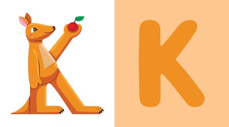 K is for Kangaroo. Letter K. Kangaroo, cute illustration. Animal alphabet Vector illustration.