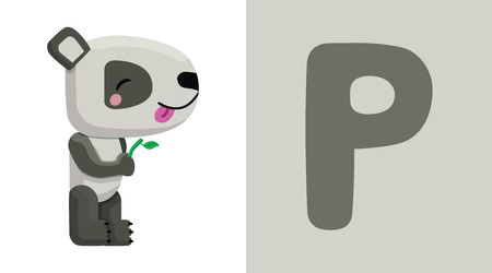 Letter P and Panda illustration.
