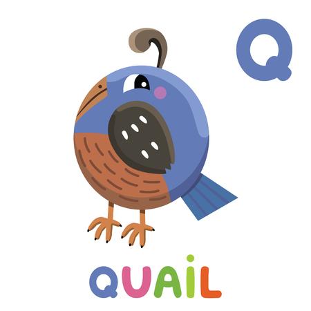 O is for Owl. Letter O. Owl., cute funny illustration Animal alphabet  イラスト・ベクター素材
