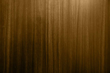 woody: Wood texture background2