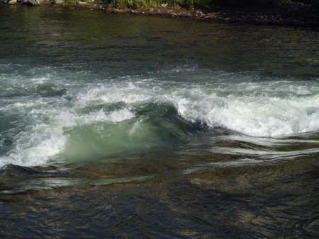 Rapids of the river