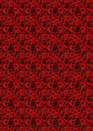 Red roses background perfect to use in Valentines Day or wedding designs.