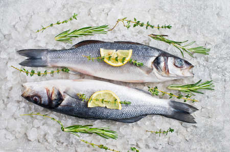 Raw sea bass on ice with rosemary, thyme and lemon. Gray background, top view