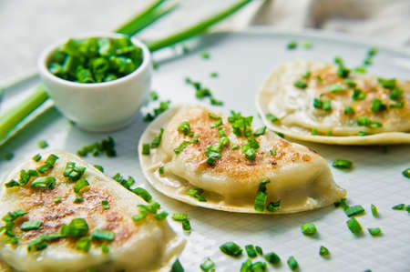 Homemade Chinese dumplings, chopsticks, fresh green onions. Gray background, side view, close-up