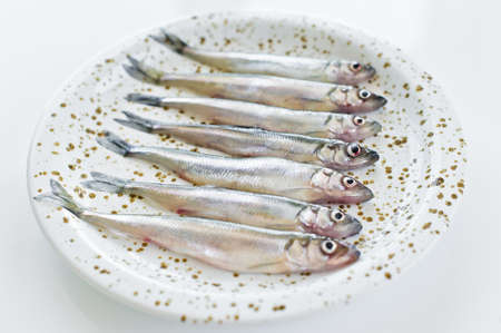 Raw smelt on a plate. White background, top view, space for text