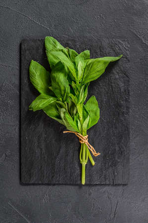 A sprig of Basil on a black background. Space for text. Seasoning for vegetables