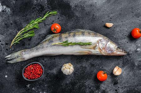 Raw zander, walleye fish with herbs. Black background. Top view. Archivio Fotografico