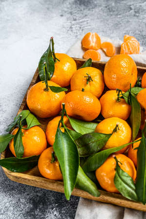 Fresh mandarin oranges fruit or tangerines with leaves in a wooden bowl. Gray background. Top view.
