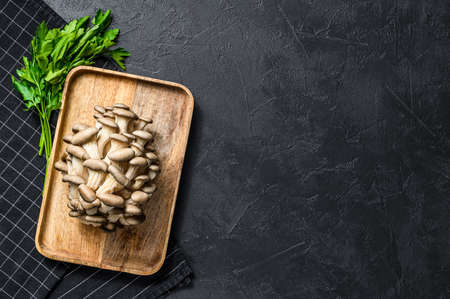 Raw oyster mushrooms in a wooden bowl with parsley. Organic food. Black background. Top view. Space for text.