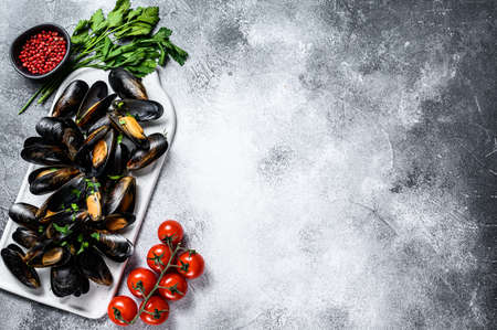 Fresh uncooked mussels in shells. The concept of cooking in tomato sauce with parsley. Gray background. Top view. Space for text.