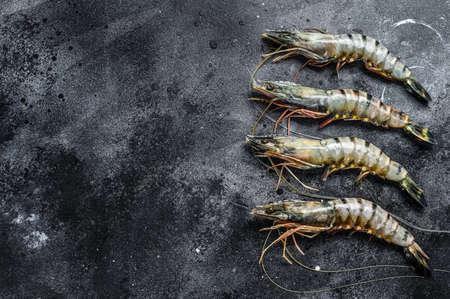 Black raw tiger prawns. Black background. Top view. Copy space. Stock Photo