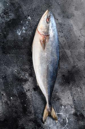 Raw Japanese yellowtail. Fresh Fish Amberjack. Black background. Top view. Reklamní fotografie