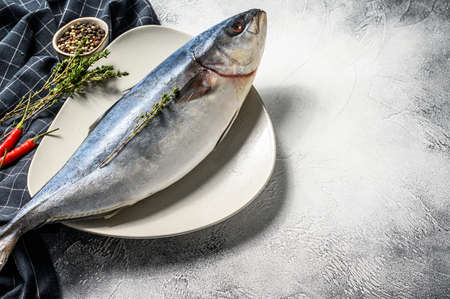 One piece of Japanese amberjack. Raw Fish Yellowtail. Gray background. Top view. Copy space. 스톡 콘텐츠