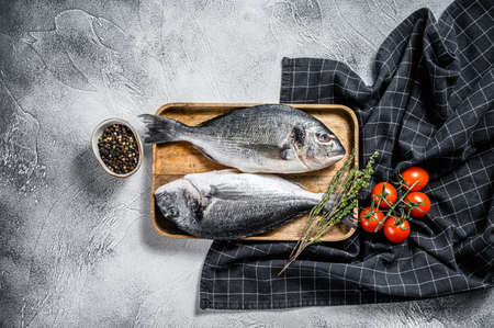 Raw Dorado fish with cooking ingredients, cherry tomatoes, thyme, pepper. Gray background. top view Reklamní fotografie