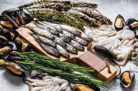 Assorted set of fresh seafood tiger prawns, shrimps, blue mussels, octopuses, sardines, smelt. Gray background. Top view.