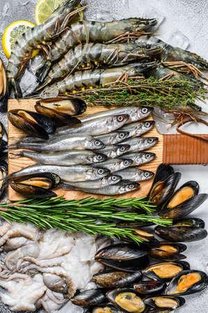 Assorted set of fresh seafood tiger prawns, shrimps, blue mussels, octopuses, sardines, smelt. Gray background. Top view. Stock fotó - 157793549