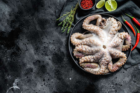 Fresh octopus with cooking ingredients, lime, thyme, chili pepper. Black background. Top view. Copy space Stock Photo