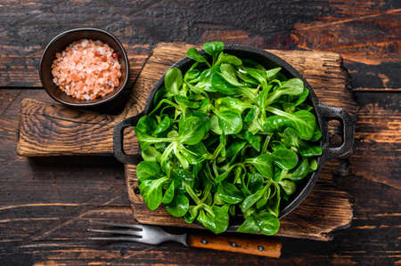 Fresh Raw green lambs lettuce Corn salad leaves in a pan. Dark wooden background. Top view