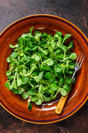 Fresh green corn salad leaves on a rustic plate. Dark background. Top view 免版税图像