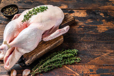Raw whole mallard duck, poultry meat with herbs. Dark wooden background. Top view. Space for text Banque d'images