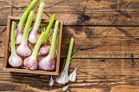 Young Spring garlic bulbs and cloves in wooden box. Wooden background. Top view. Copy space Фото со стока