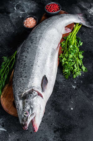 Uncooked raw sea salmon whole fish on a wooden board with herbs. Black background. Top view Фото со стока